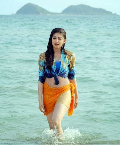 Pranitha Subhash Measurement