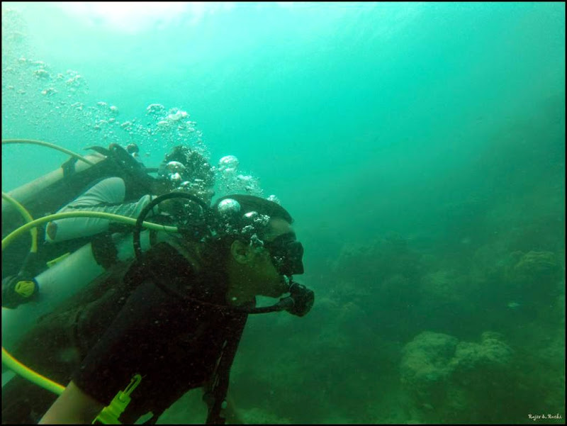 Scuba Diving in the Andamans - Havelock Island