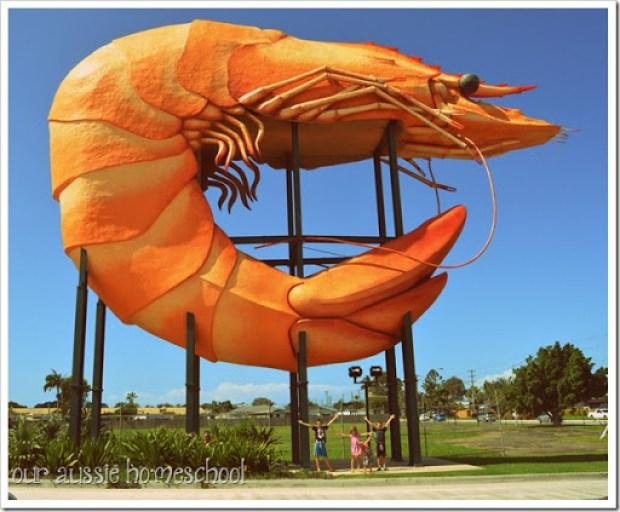 The Big Prawn near Ballina, NSW. | Our Aussie Homeschool