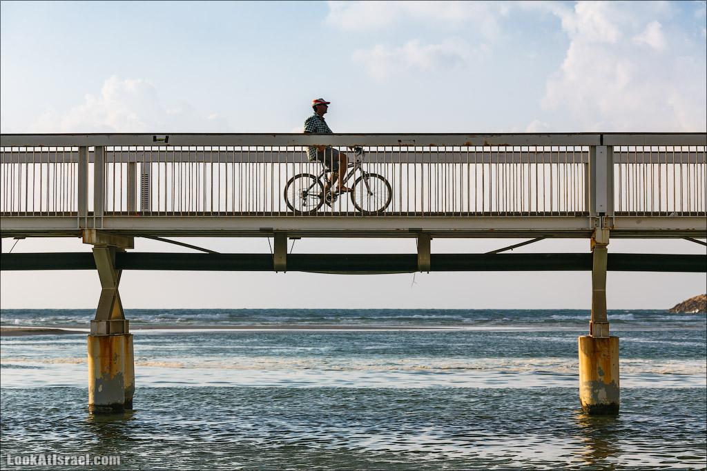 Мост Уокопа в Тель Авиве   Wokop Reading Bridge in Tel-Aviv   LookAtIsrael.com - Фото путешествия по Израилю