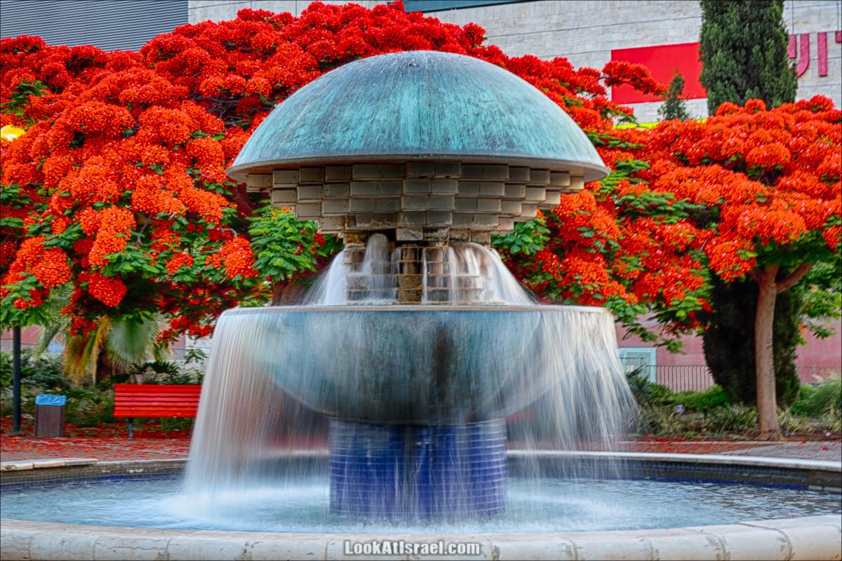 Цветущий фонтан
