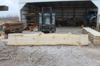 "Tulip Poplar 134-7  2 1/4"" x 27"" - 24"" Wide x 16' Long  Kiln dried"