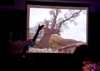 21 junio autoestima Flamenca_305S_Scamardi_tangos2012.jpg