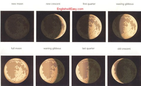 Phases of the moon   new moon, new crescent,  first quarter, waxing, gibbous,  full moon, waning gibbous, last quarter, old crescent