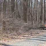 Institute Woods 6K - IMG_4919.JPG