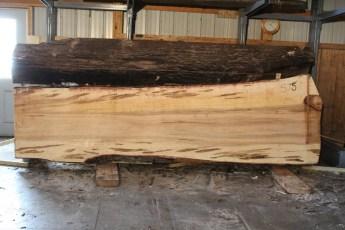 "575  Ambrosia Maple -7 12/4x 46"" x 34"" Wide x  12'  Long"
