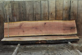 "468 Cherry -2 2 1/2 "" x 24"" x 23"" Wide x 10' Long"