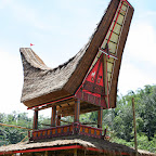 0261_Indonesien_Limberg.JPG