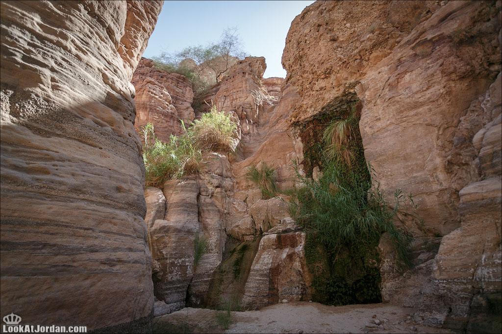 Вади Худейра на LookAtJordan.com | LookAtIsrael.com - Фотографии Израиля и не только...