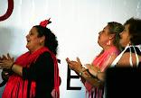 DistritoSur_2008MayoBaja98.jpg