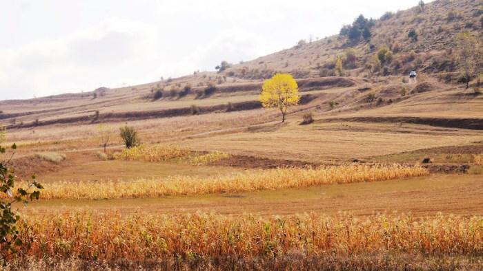 The road to Sapara Monastery