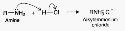 chemical properties of amines, salt formation, amine react with acid