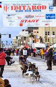 Iditarod2015_0236.JPG