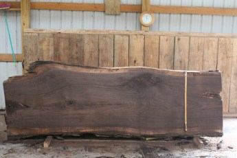 "508 Walnut -3 12/4  x  42"" x  35"" Wide x 10' Long"