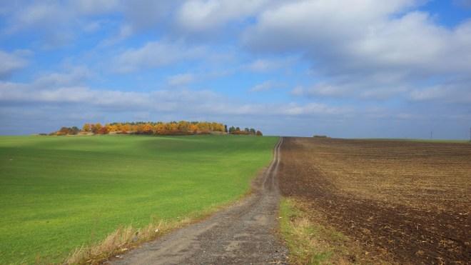 Дорога до форту