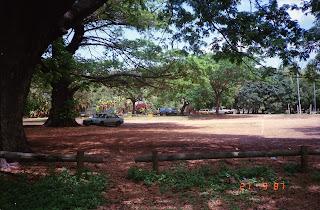 3140Darwin Botanic Gardens