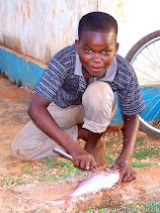 Mussa's brother cleaning a fish