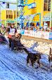 Iditarod2015_0347.JPG