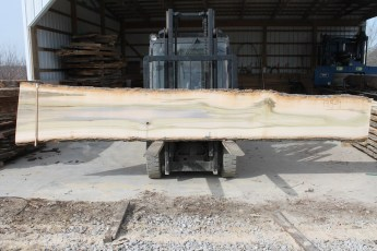 "Tulip Poplar 135-9  2"" x 28"" - 19"" Wide x 16' Long  Kiln dried"