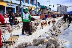 Iditarod2015_0186.JPG