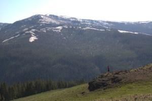 Overlook on the way to Lake Yellowstone Hotel