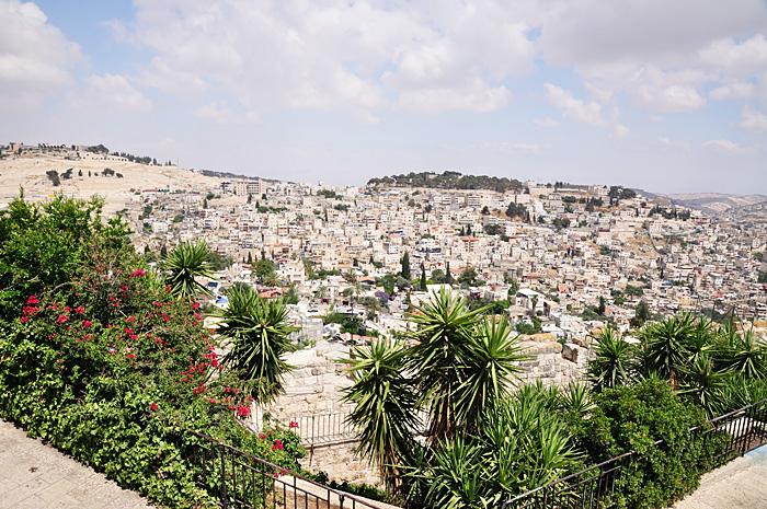 IerusalimMaslini34.JPG