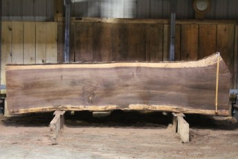 "608 Walnut - 8 5/4 x 34"" x 28"" Wide x  10'  Long"