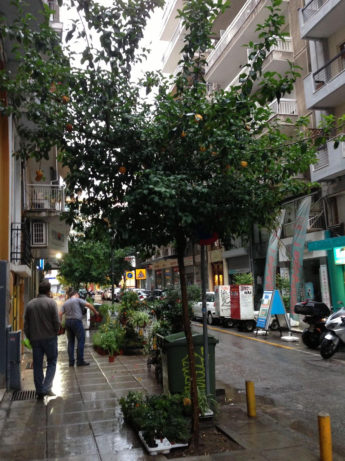 Day 19 - 2013-06-12 - Thessaloniki - IMG_1212.JPG