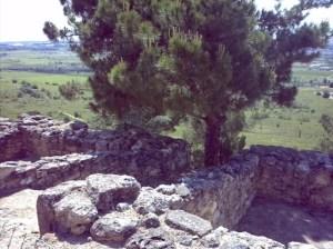 Gaulish Village – south side stone houses