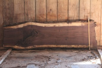 "519 Walnut -8 8/4  x  30"" x  22"" Wide x 8' Long"