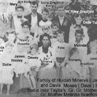 bradfordMinervafamily