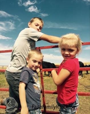 Beef, Hormones, Family, kids, Health