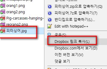 Dropbox 링크 복사