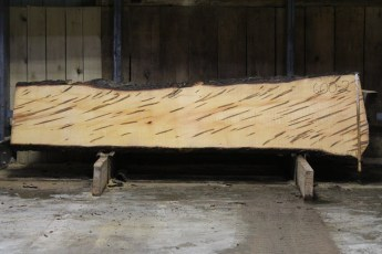 "600  Ambrosia Maple - 2 8/4x 29"" x 20"" Wide x  10'  Long"