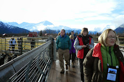 Bear Enclosure Wildflife Conservation Center.JPG