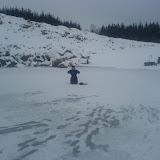 Guzz i snö