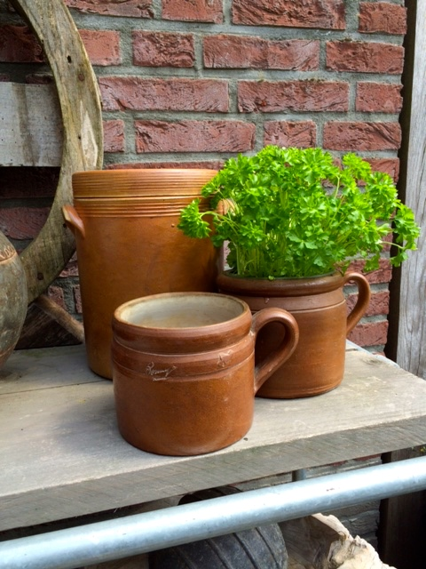 zaterdag bruine potten.jpg