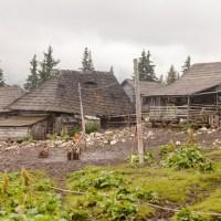 De la Ciungetu la Petroşani, prin Târnov şi Parâng