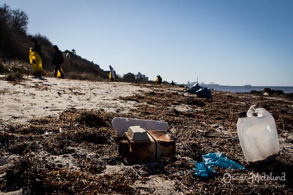 Strandstädning 2013 - IMG_3189.jpg