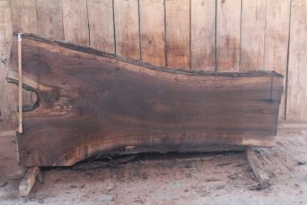 "516 Walnut -2 10/4  x  47"" x  28"" Wide x 8' Long"