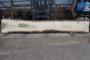 "082 - 12 Poplar 2 1/2"" x 27 - 17"" Wide x 16' Long  Kiln dried"