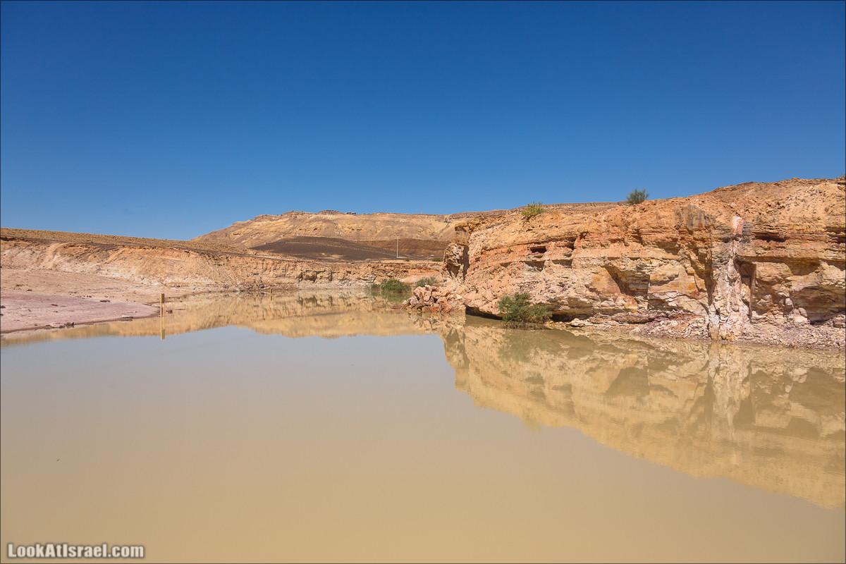 Озеро в Махтеш Рамон | Lake in Makhtesh Ramon | עגם במכתש רמון |  LookAtIsrael.com - Фото путешествия по Израилю