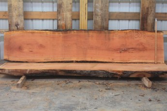 Cherry 308-5  Length 10', Max Width (inches) 25 Min Width (inches) 22 Thickness 10/4  Notes :