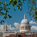 Intermediate 3rd - St Pauls through the trees_David Marsden.jpg