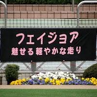 KIF_4628.jpg