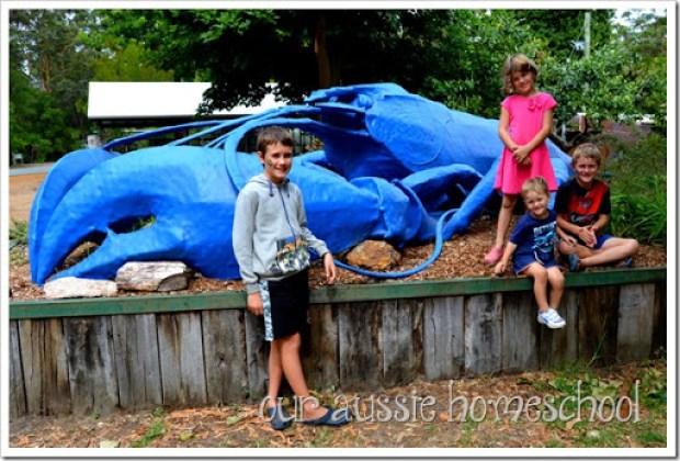 Big Marron near Denmark, Western Australia | Our Aussie Homeschool
