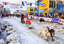 Iditarod2015_0428.JPG