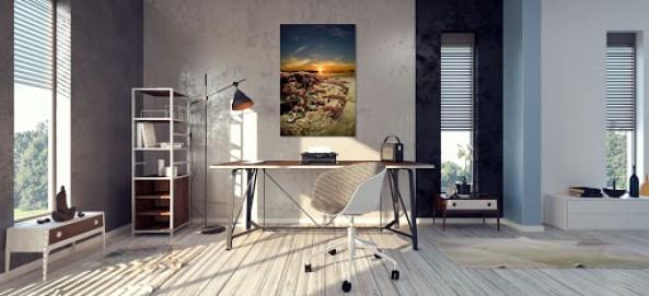 anemone photograph hangs over work desk