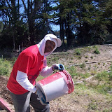 IVLP 2010 - Volunteer Work at Presidio Trust - 100_1424.JPG