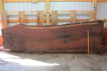 Walnut 319-7  Length 12', Max Width (inches) 48 Min Width (inches) 39 Thickness 12/4  Notes :Kiln Dried